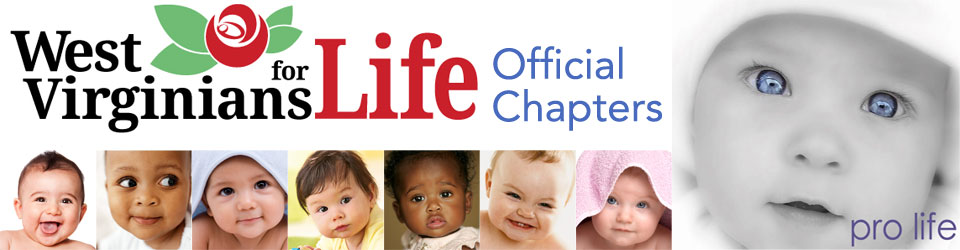 WVFL Chapters